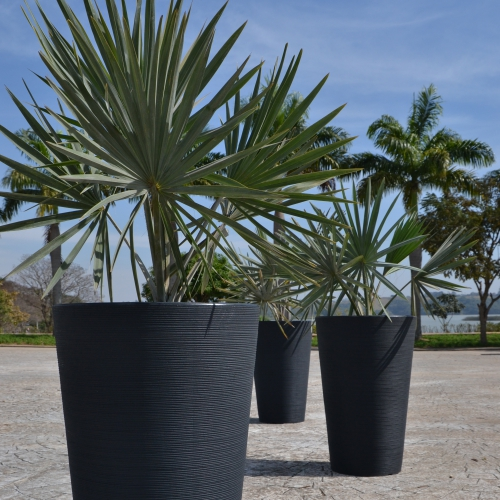 Linea Conic Planter
